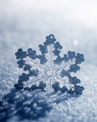 Snowflake Macro HD - Obrázkek zdarma pro 480x854