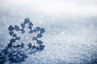 Snowflake Macro HD - Obrázkek zdarma pro Samsung Galaxy S6