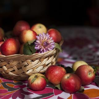 Bunch Autumn Apples - Obrázkek zdarma pro iPad 2