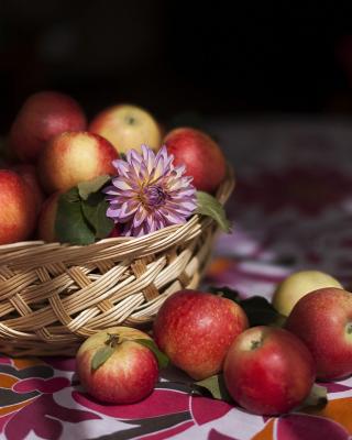 Bunch Autumn Apples - Obrázkek zdarma pro Nokia Asha 501