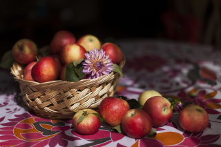 Bunch Autumn Apples - Obrázkek zdarma pro Widescreen Desktop PC 1920x1080 Full HD