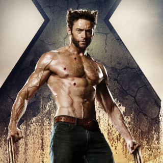 Wolverine In X Men Days Of Future Past - Obrázkek zdarma pro iPad