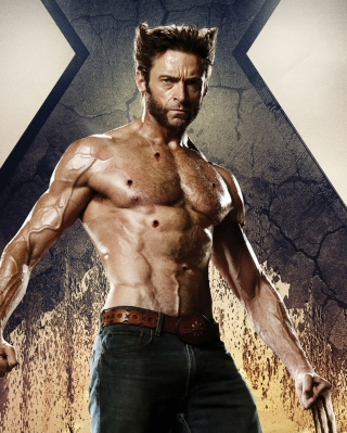 Wolverine In X Men Days Of Future Past - Obrázkek zdarma pro Nokia C-5 5MP
