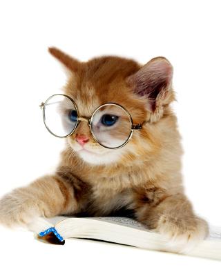 Clever Kitten - Obrázkek zdarma pro iPhone 5