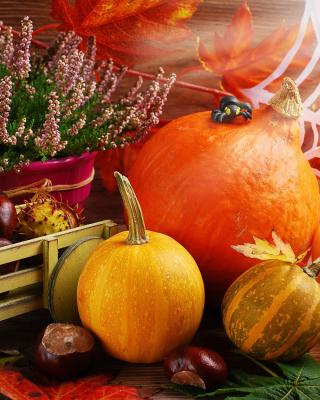 Harvest Still Life - Obrázkek zdarma pro 480x854