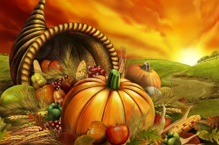 Thanksgiving Pumpkin - Obrázkek zdarma pro 320x240