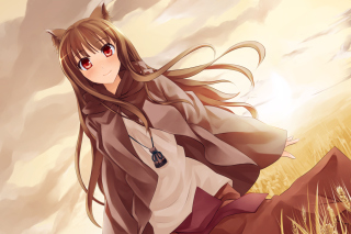 Smile Spice And Wolf Wallpaper for Android, iPhone and iPad