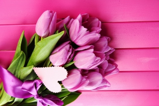 Purple Tulips Wallpaper for Android, iPhone and iPad