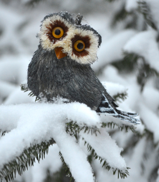 Funny Fluffy Eyes Owl - Obrázkek zdarma pro Nokia Asha 308