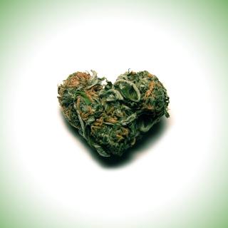 Weed Heart - Obrázkek zdarma pro 128x128
