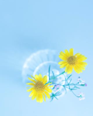 Simple flower in vase - Obrázkek zdarma pro Nokia X1-00