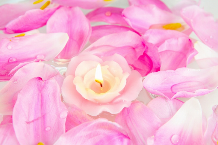 Candle on lotus petals wallpaper