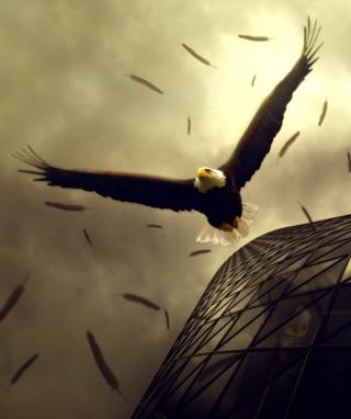 Eagle Flight - Obrázkek zdarma pro 240x320