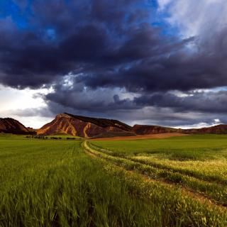 Field and Sky - Obrázkek zdarma pro 1024x1024