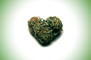 I Love Weed Marijuana - Obrázkek zdarma pro Sony Xperia Z3 Compact
