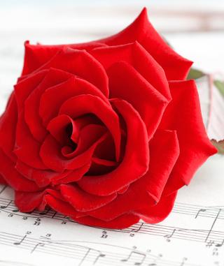 Red Rose Music - Obrázkek zdarma pro 320x480
