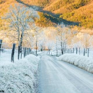 Winter road in frost - Obrázkek zdarma pro iPad 2