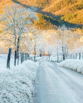 Winter road in frost - Obrázkek zdarma pro 240x400