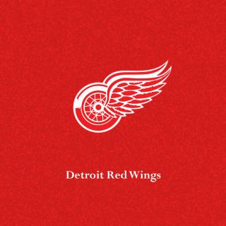 Detroit Red Wings - Obrázkek zdarma pro iPad 3