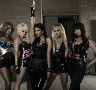 The Pussycat Dolls - Obrázkek zdarma pro 1024x1024