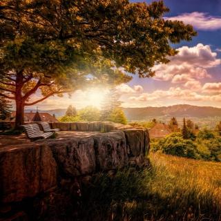 Zurich Park near Lake Zurich - Obrázkek zdarma pro iPad 2