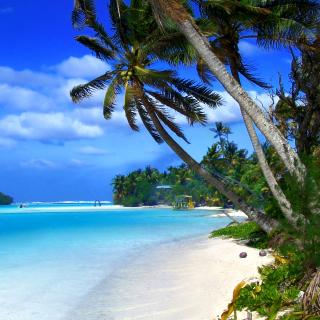 Beach on Cayman Islands - Obrázkek zdarma pro 128x128
