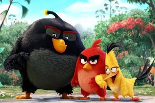 The Angry Birds Comedy Movie 2016 - Obrázkek zdarma pro Samsung Galaxy Note 2 N7100