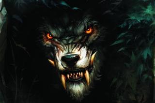 Werewolf Artwork - Obrázkek zdarma pro Nokia Asha 205