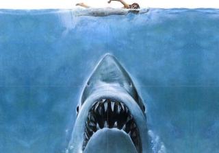 Jaws - Obrázkek zdarma pro Samsung Galaxy Q