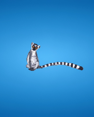 Lemur On Blue Background - Obrázkek zdarma pro iPhone 5C