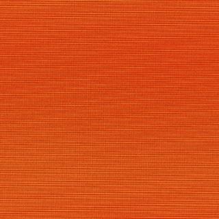 Orange texture - Obrázkek zdarma pro iPad 2