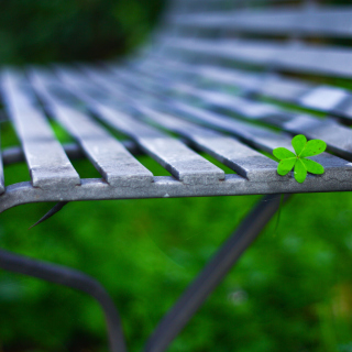 Macro green leaf - Obrázkek zdarma pro iPad mini