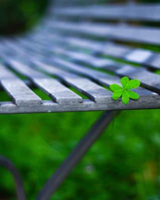 Macro green leaf - Obrázkek zdarma pro 132x176