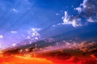Orange Sunset Wallpaper for Android, iPhone and iPad
