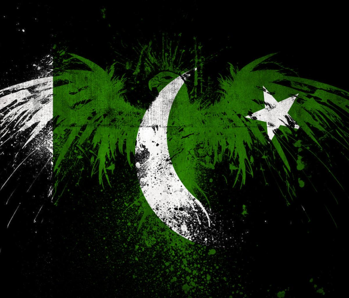 Screenshot №1 pro téma Pakistan Flag 1200x1024