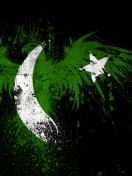 Screenshot №1 pro téma Pakistan Flag 132x176