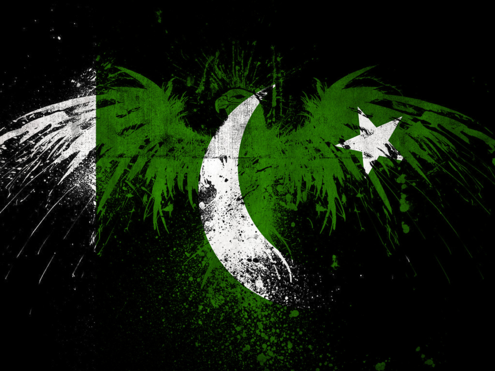 Screenshot №1 pro téma Pakistan Flag 1600x1200