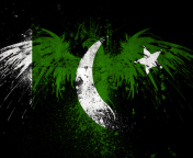 Screenshot №1 pro téma Pakistan Flag 176x144