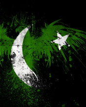 Screenshot №1 pro téma Pakistan Flag 176x220