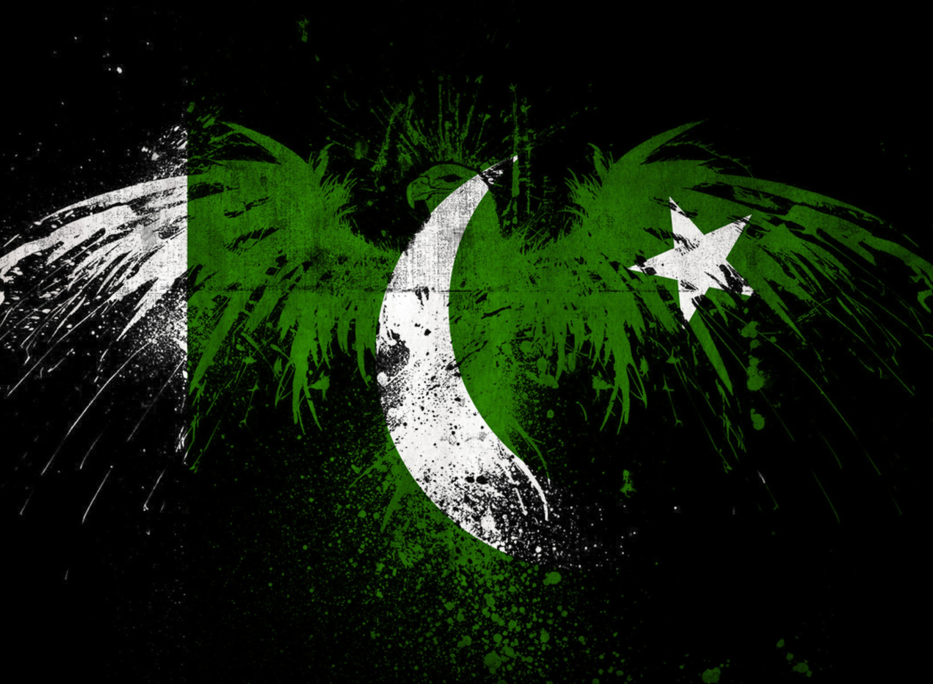 Screenshot №1 pro téma Pakistan Flag 1920x1408