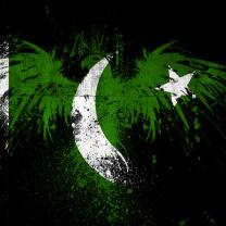 Screenshot №1 pro téma Pakistan Flag 208x208