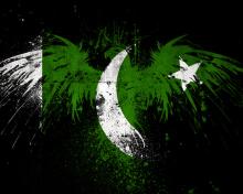 Screenshot №1 pro téma Pakistan Flag 220x176