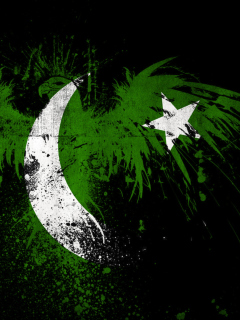Screenshot №1 pro téma Pakistan Flag 240x320