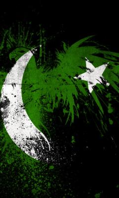 Screenshot №1 pro téma Pakistan Flag 240x400