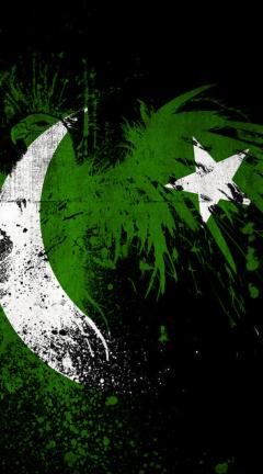 Screenshot №1 pro téma Pakistan Flag 240x432