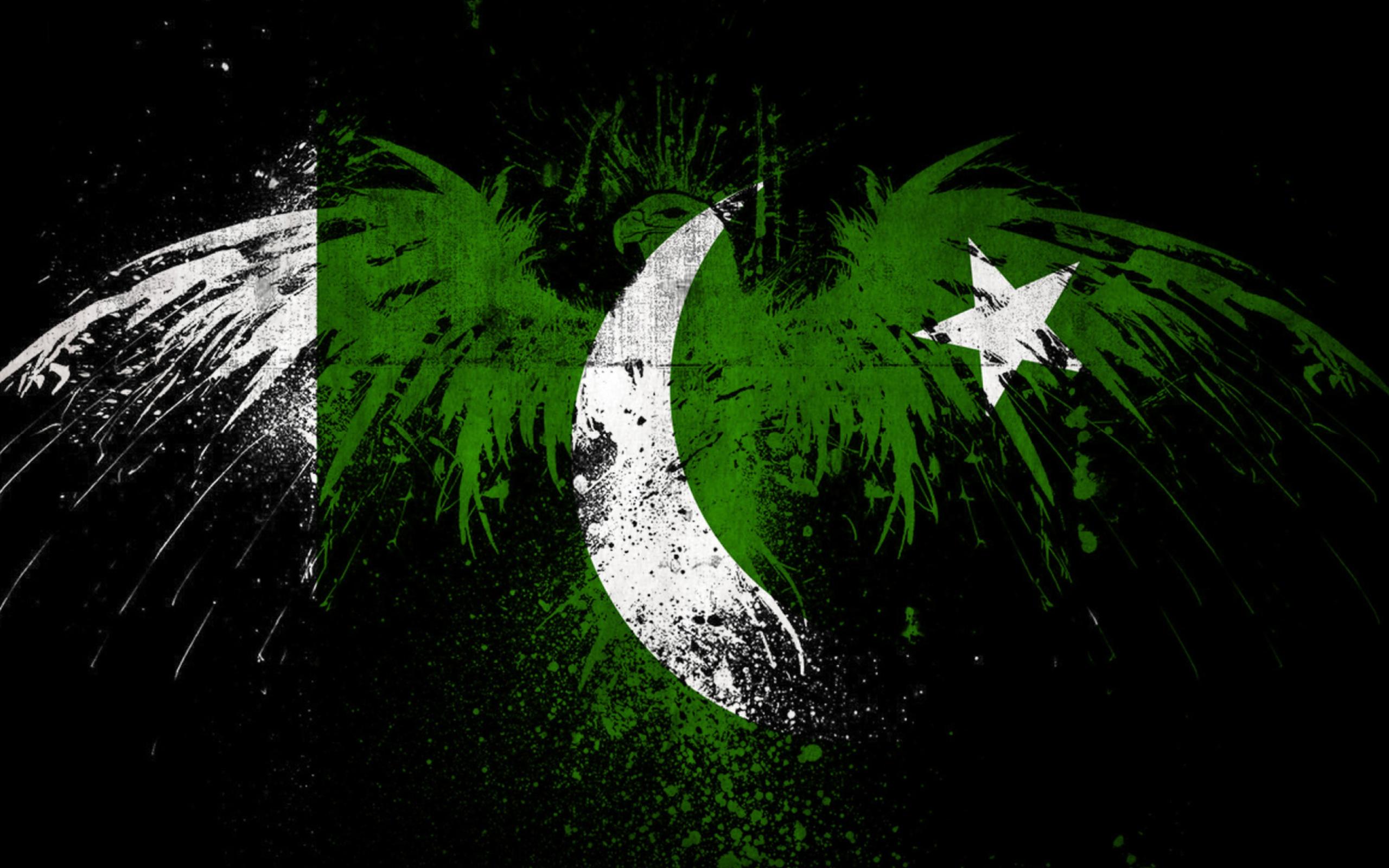 Screenshot №1 pro téma Pakistan Flag 2560x1600