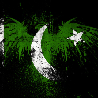 Screenshot №1 pro téma Pakistan Flag 320x320