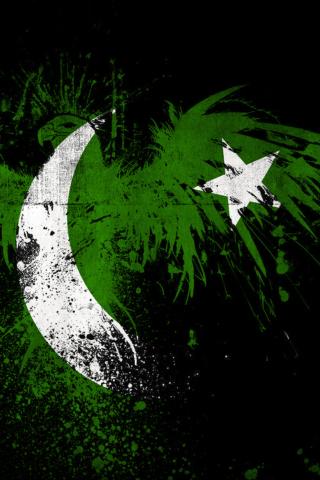 Screenshot №1 pro téma Pakistan Flag 320x480