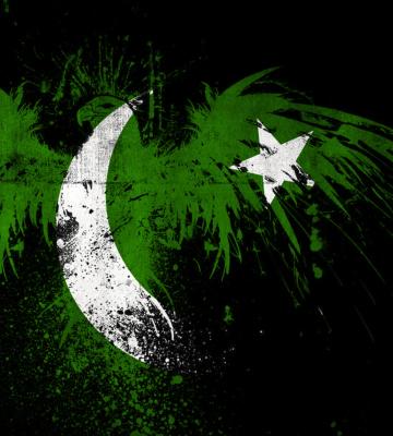 Screenshot №1 pro téma Pakistan Flag 360x400