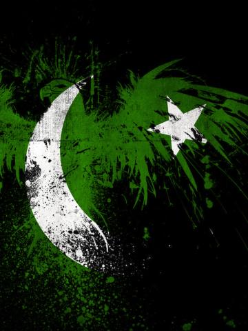 Screenshot №1 pro téma Pakistan Flag 360x480